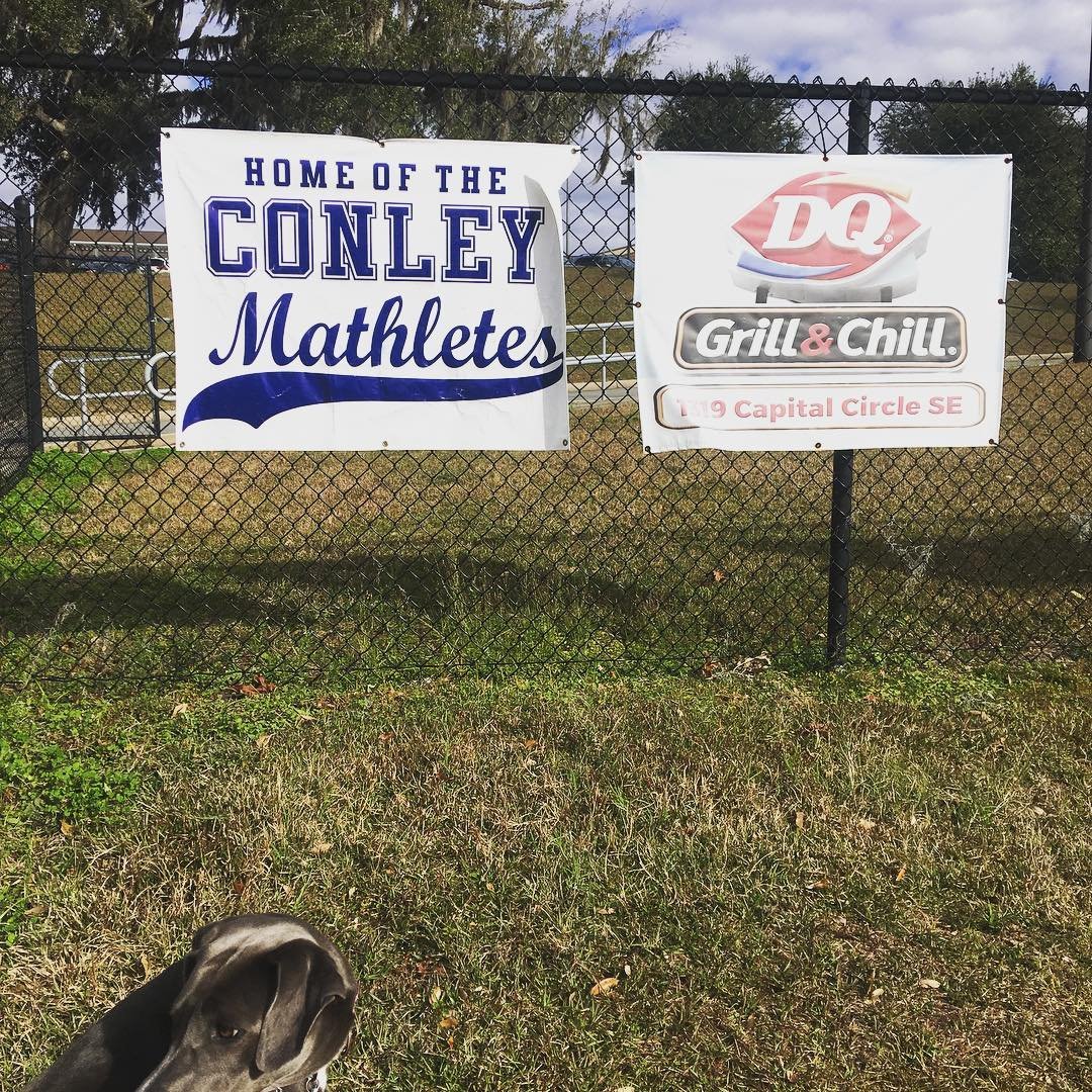 "school signs reading ""Mathletes"" and ""Dairy Queen"""