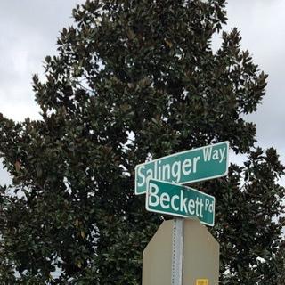 Corner of Salinger and Beckett streetsign