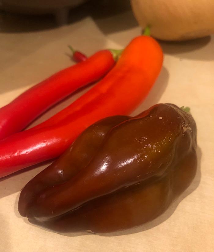 a brown bell pepper