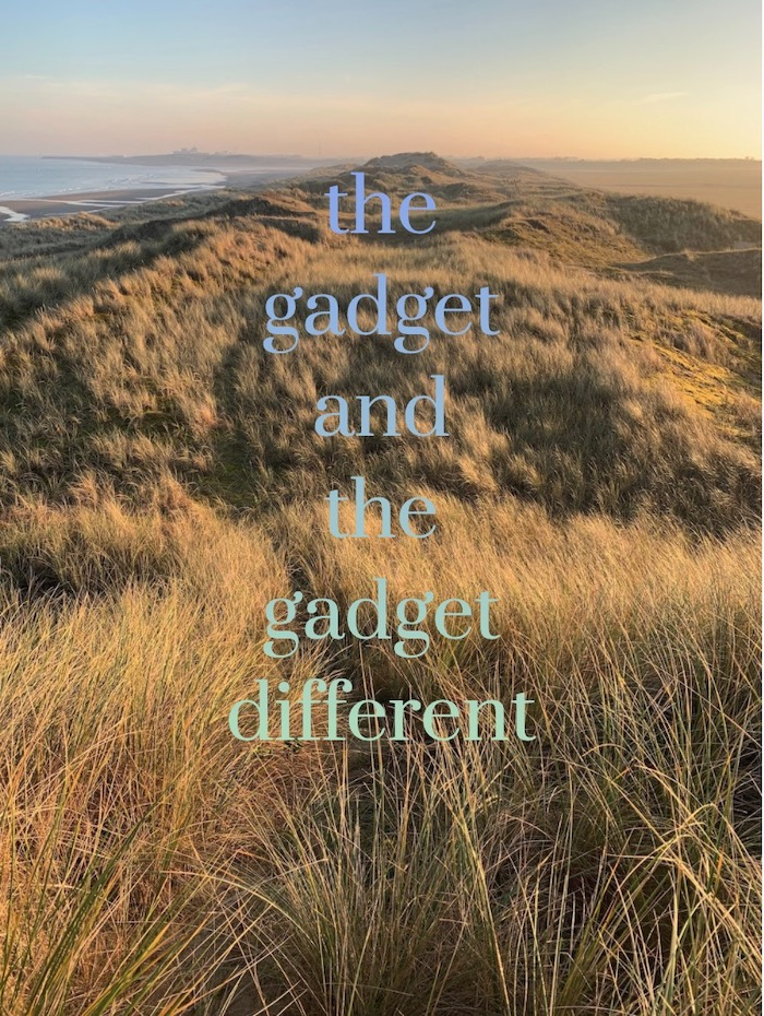 mock book-cover titled The Gadget and The Gadget Different