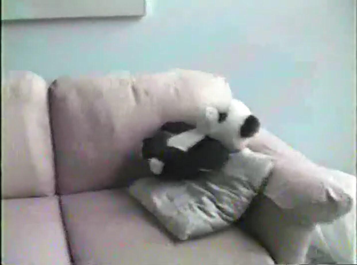 Stuffed panda