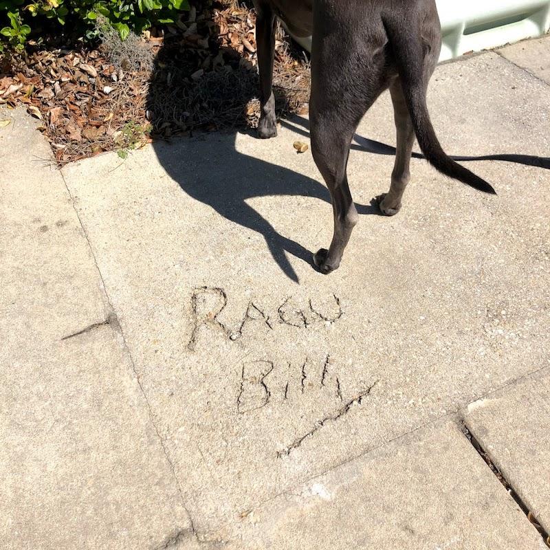 sidewalk graffiti reading Ragu Billy